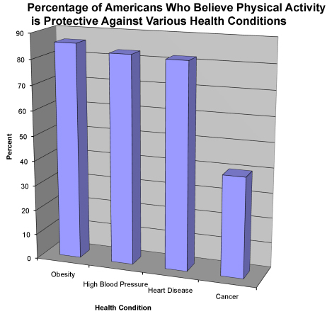 2008 Physical Activity Survey