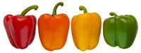 4 Colors of Bell Peppers